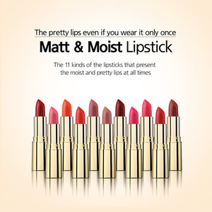 It's CHIC MATT & MOIST  LIPSTICK셀라니코